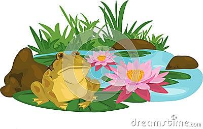 frog Lotus river