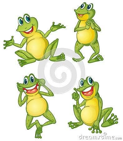 Frog series