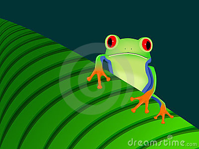 Frog sitting on leaf