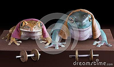 Froggy push-ups