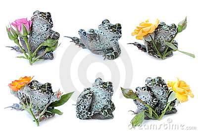 Frogs,flowers, roses,