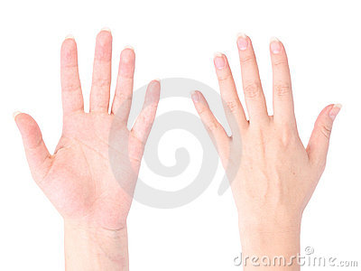 Front And Back Of The Hand Royalty Free Stock Image