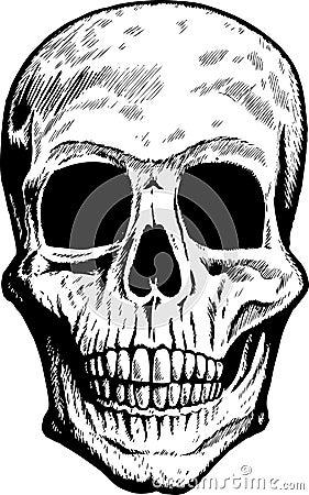 Front Skull