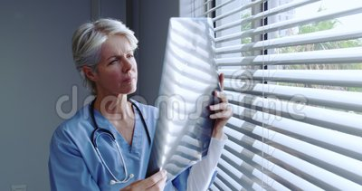 Front view of mature Caucasian female doctor looking at x-ray report in hospital. She is standing near window stock video footage