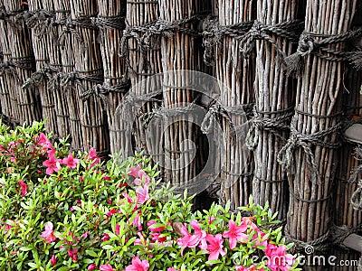 Frontière de sécurité et fleurs