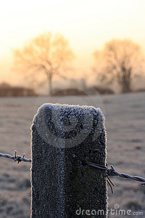 Frost covered fence post