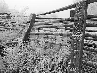 Frost on farm fence