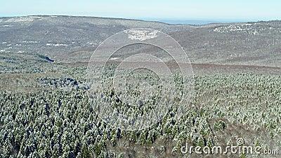 Frost und Sonne, wunderbarer Tag Winter in Russland, schneebedeckter Wald in den Bergen, Aussicht auf die Luft stock footage
