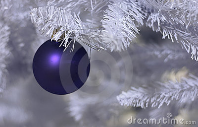 Frosted christmas