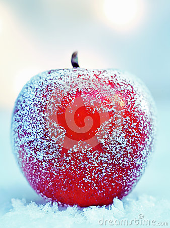 Frosted Christmas apple on snow