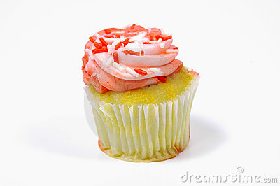 Frosted Cupcake