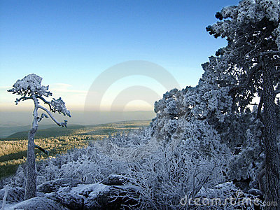 Frosted Mountains II