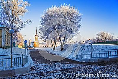 Frosted tree in Kolomna Kremlin