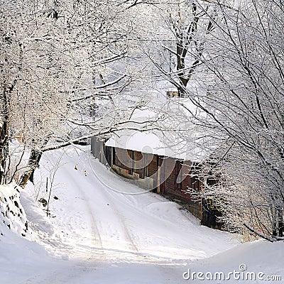 Frosty january day