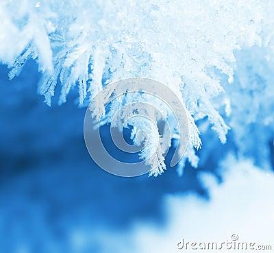 Frosty snow closeup macro