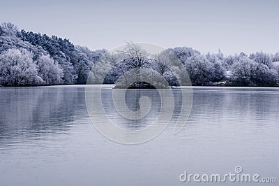Frosty winter trees landscape with reflection in lake
