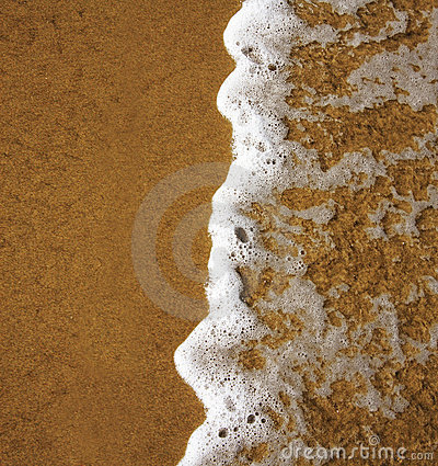 Frothy ocean wave on a sandy beach