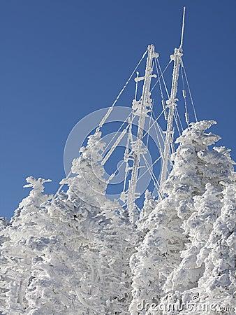 Frozen antenna