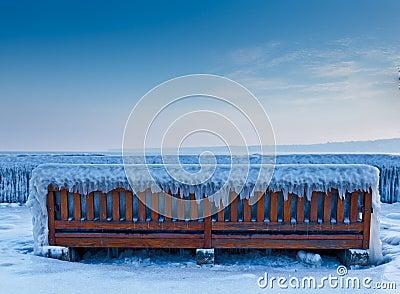 Frozen bench