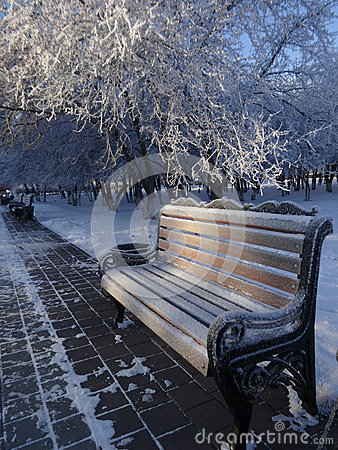 Free Frozen Bench In A City Park Winter Royalty Free Stock Photos - 80298048