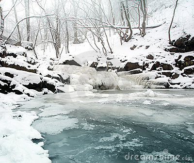 Frozen brook