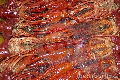 Frozen craw-fish