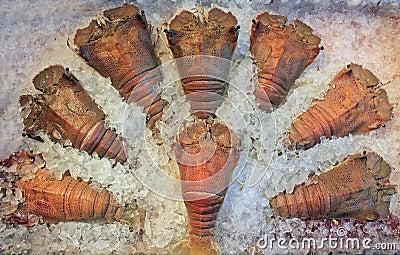 Frozen crayfish
