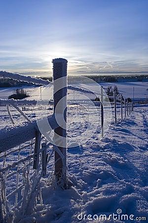 Free FROZEN: Fence 3 Stock Image - 433321