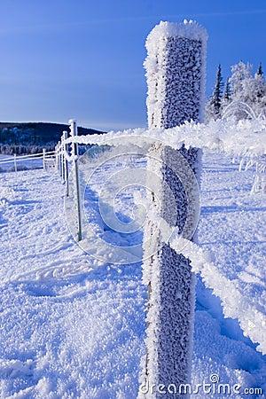 Free FROZEN: Fence Royalty Free Stock Photos - 433318