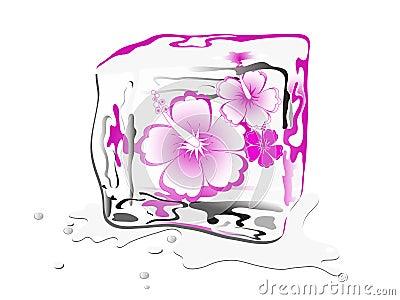 Frozen hibiscus