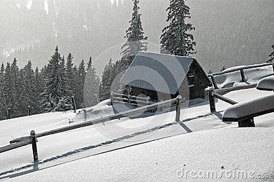 Frozen house at winter