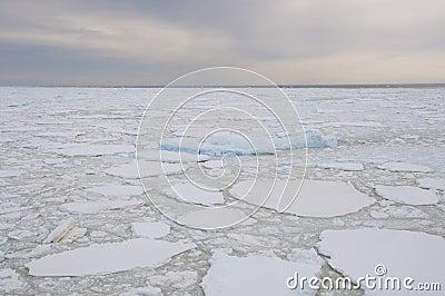 Frozen ocean in Antarctic