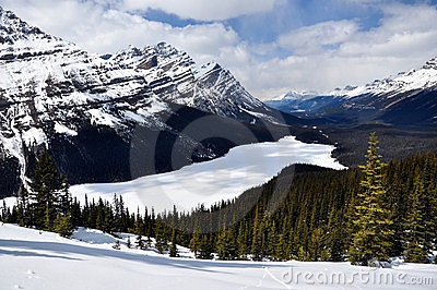 Frozen Peyto Lake , Banff National Park, Canada