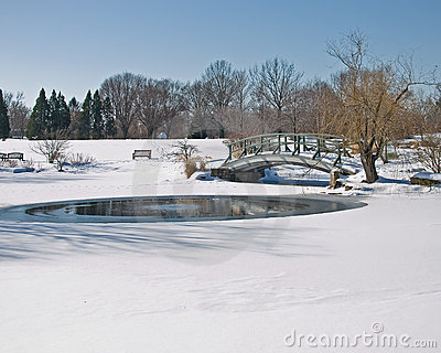 Frozen pond and bridge