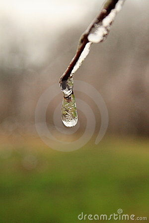 Frozen Rain Drop