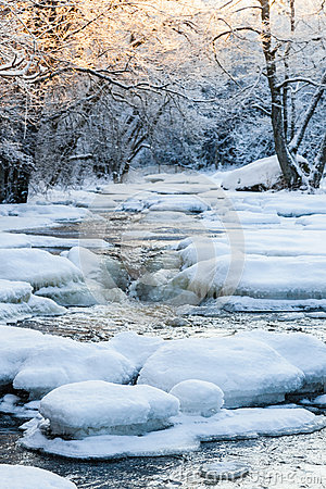 Free Frozen River In Woods Stock Photo - 62286400