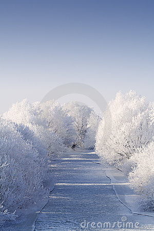 Free Frozen River With White Frost Trees Royalty Free Stock Photography - 3938827