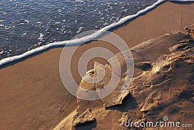 Frozen sand at the beach