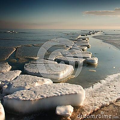Free Frozen Sea Stock Photos - 12084153
