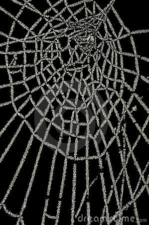 Free Frozen Spider Web Isolated On Black Royalty Free Stock Photos - 17532448