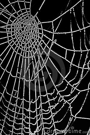 Free Frozen Spider Web Isolated On Black Royalty Free Stock Images - 17554319