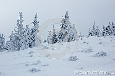 Frozen winter mountain landscape in extreme cold conditions