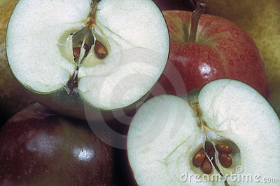 Fruit apples