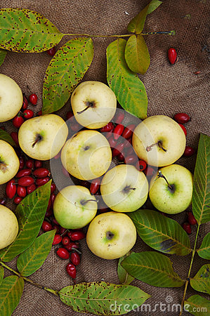 Free Fruit, Apples, Autumn Food, Yellow Fruits, Sweet Yellow Apples, Autumn Harvest, Leaves, View From Above, Green Apples In Autumn Le Royalty Free Stock Image - 62035486