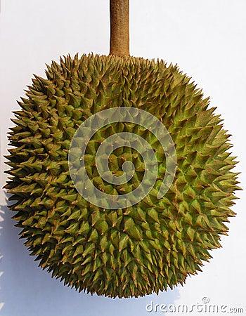 Fruit de durian