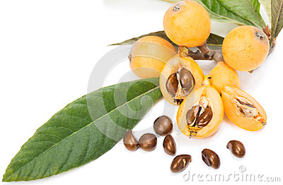 fruit de loquat cognassier du japon l d 39 eriobotrya photo stock image 40430896. Black Bedroom Furniture Sets. Home Design Ideas