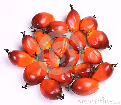 Fruit de palmier à huile
