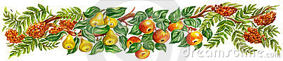 Fruit design border