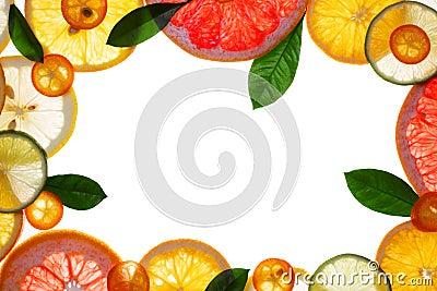 Fruit design borders