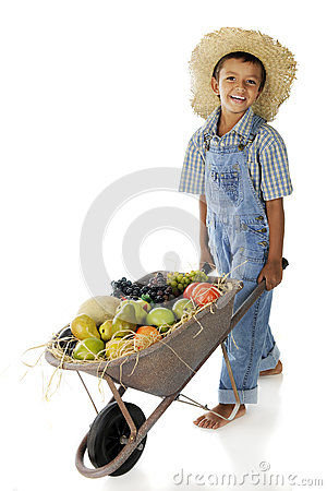 Fruit Farm Boy